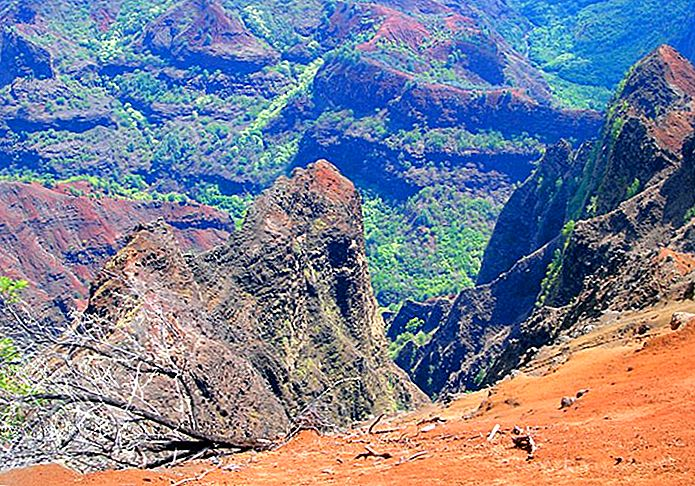 9-top-rated-tourist-attractions-on-kauai-3Kohe'e 주립공원.jpg