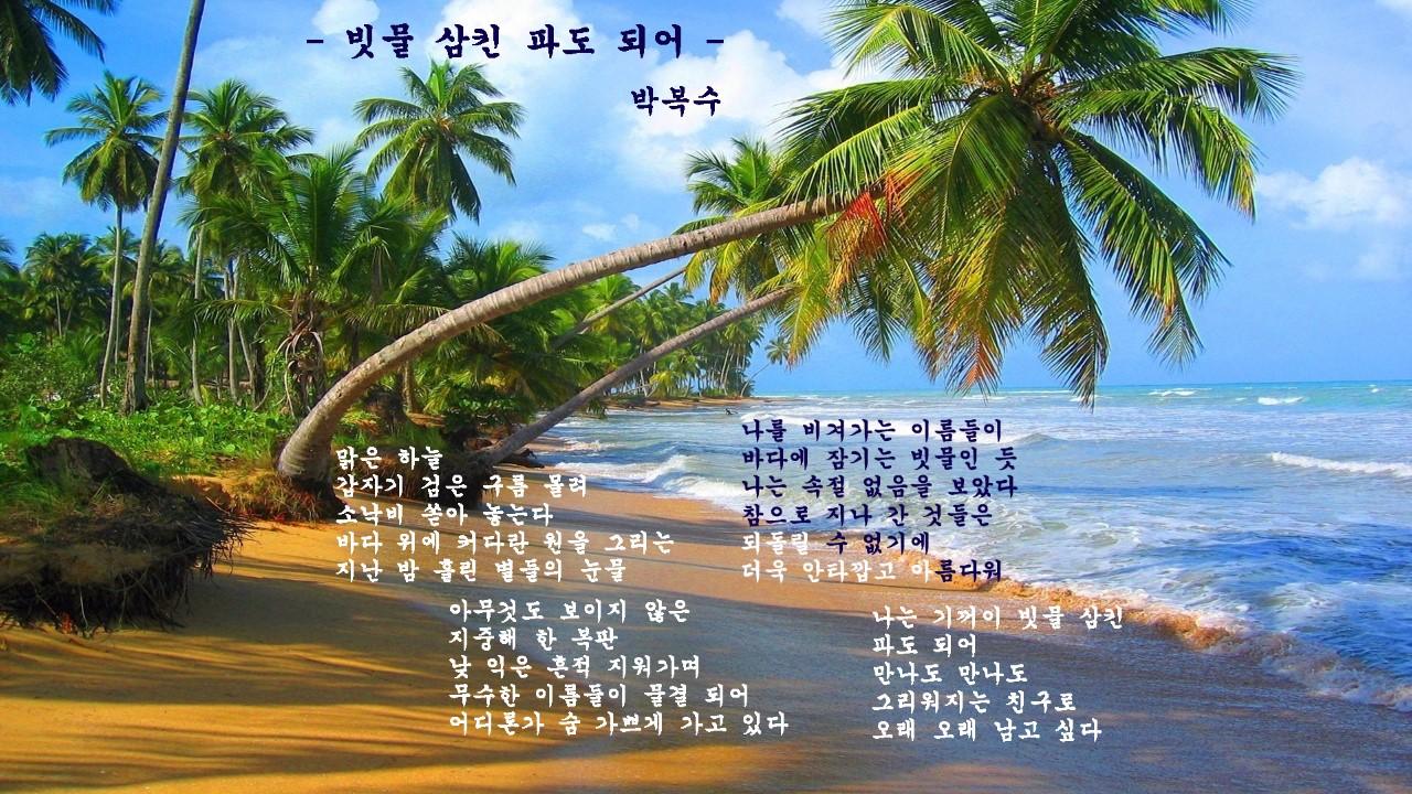 박복수 시.jpg