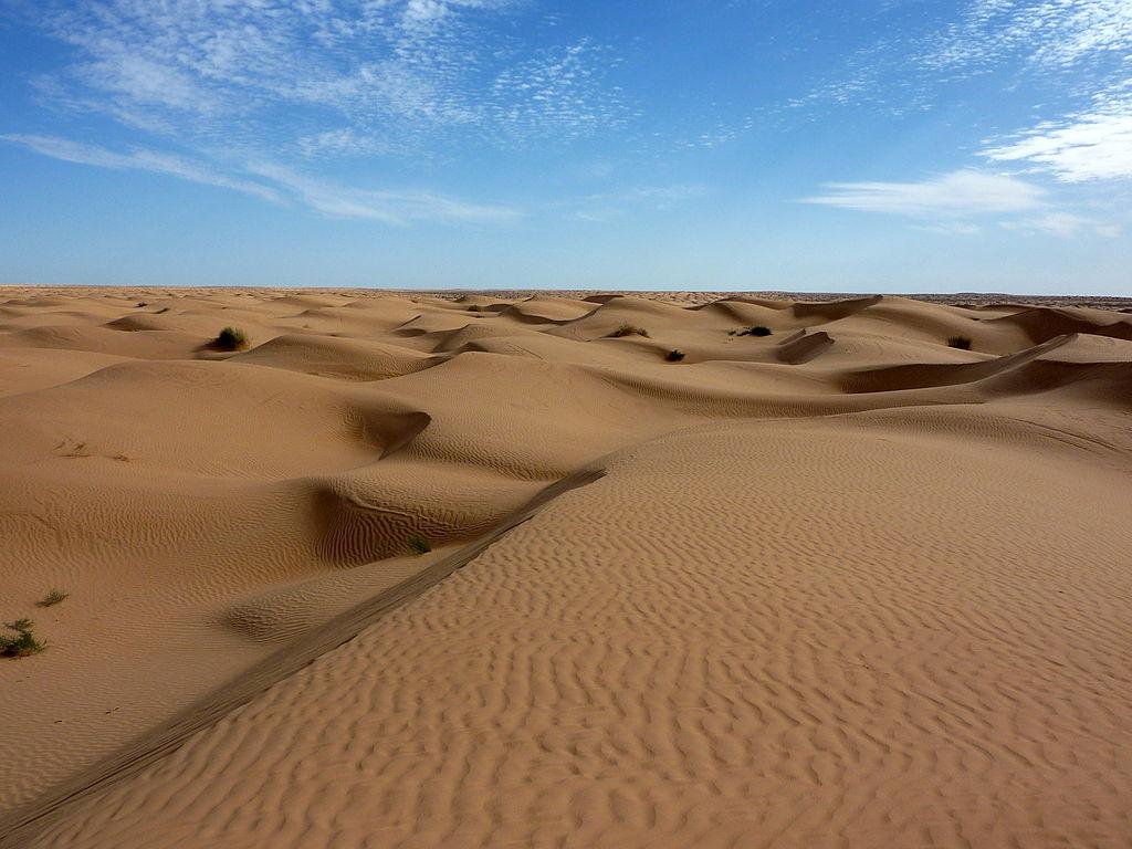 사하라사막.jpg