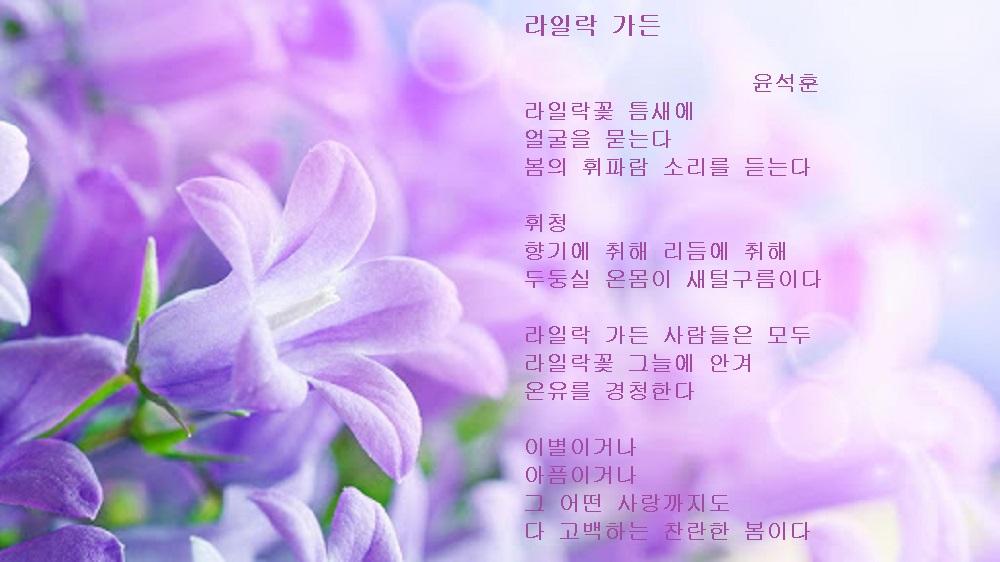 라일락 가든-윤석훈.jpg