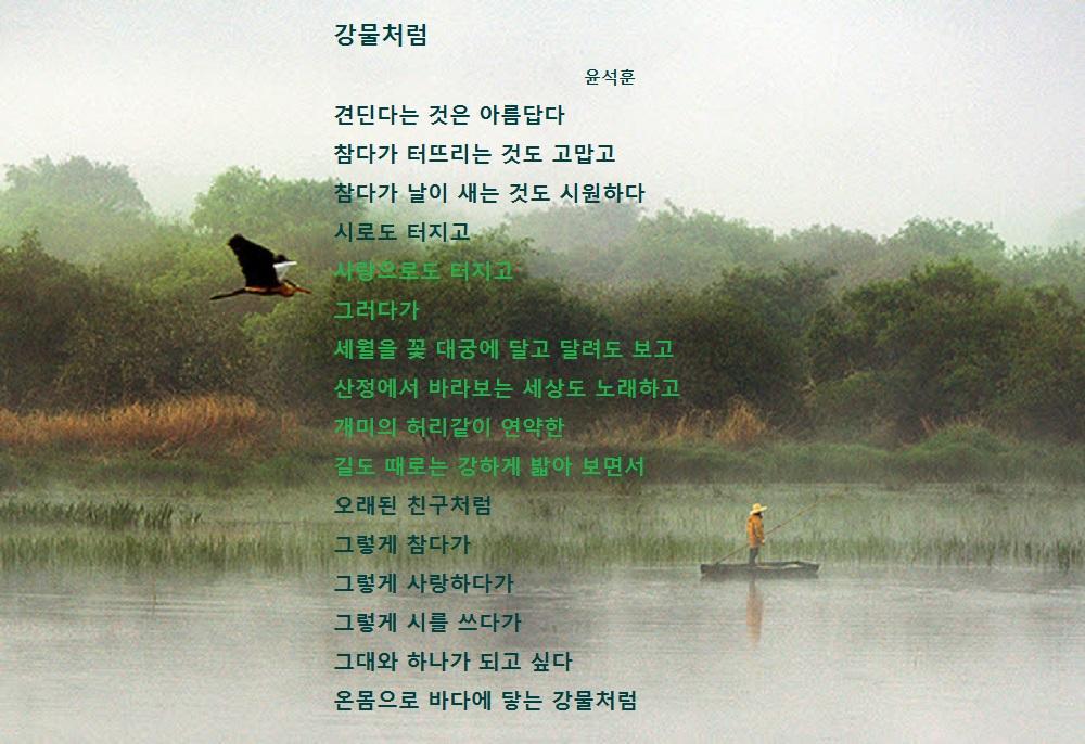 강문처럼2-윤석훈.jpg