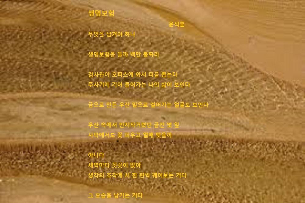 생명보험-윤석훈.jpg