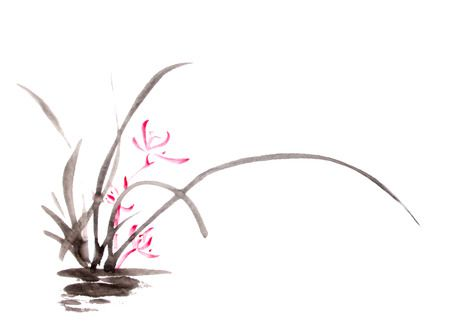 55068322-잉크-난초-그리기.jpg