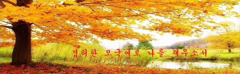 paisagem-outono-wallpaper.jpg