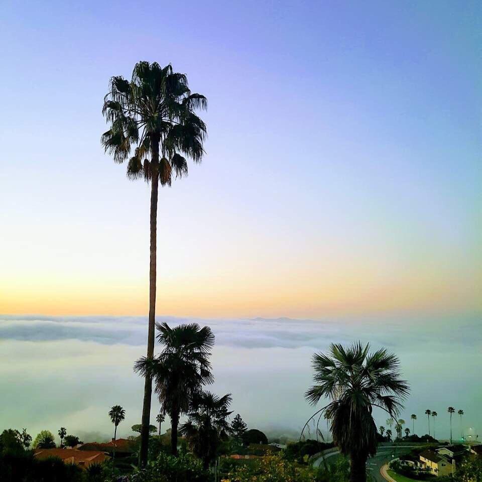 바닷가 새벽 풍경.jpg