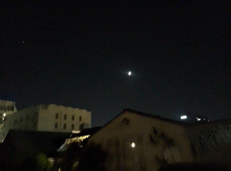불빛 달빛.jpg